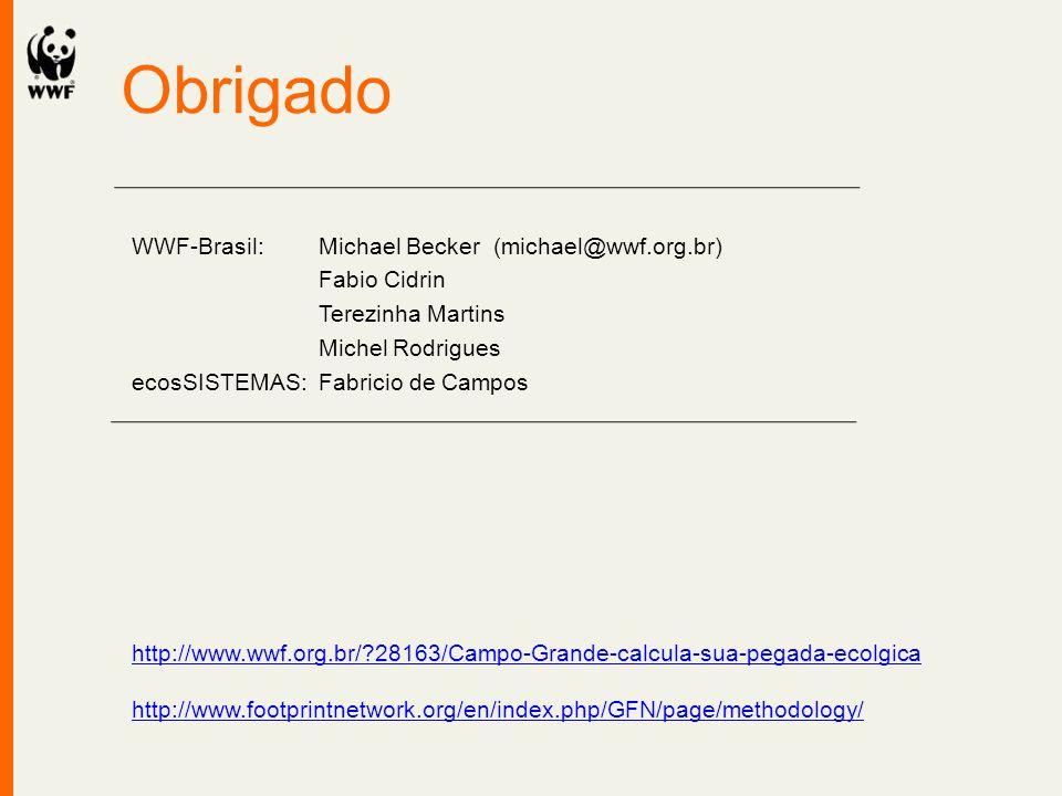 Obrigado WWF-Brasil: Michael Becker (michael@wwf.org.br) Fabio Cidrin Terezinha Martins Michel Rodrigues ecosSISTEMAS: Fabricio de Campos http://www.w
