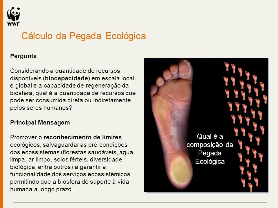 A família de pegadas Consumidor Recurso natural Pegada Ecológica Processamento Varejo Pegada de Carbono Pegada Hídrica Análise de ciclo de vida Processos Produtivos Consumo de sociedades