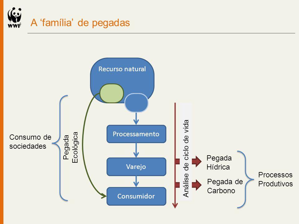 A família de pegadas Consumidor Recurso natural Pegada Ecológica Processamento Varejo Pegada de Carbono Pegada Hídrica Análise de ciclo de vida Proces