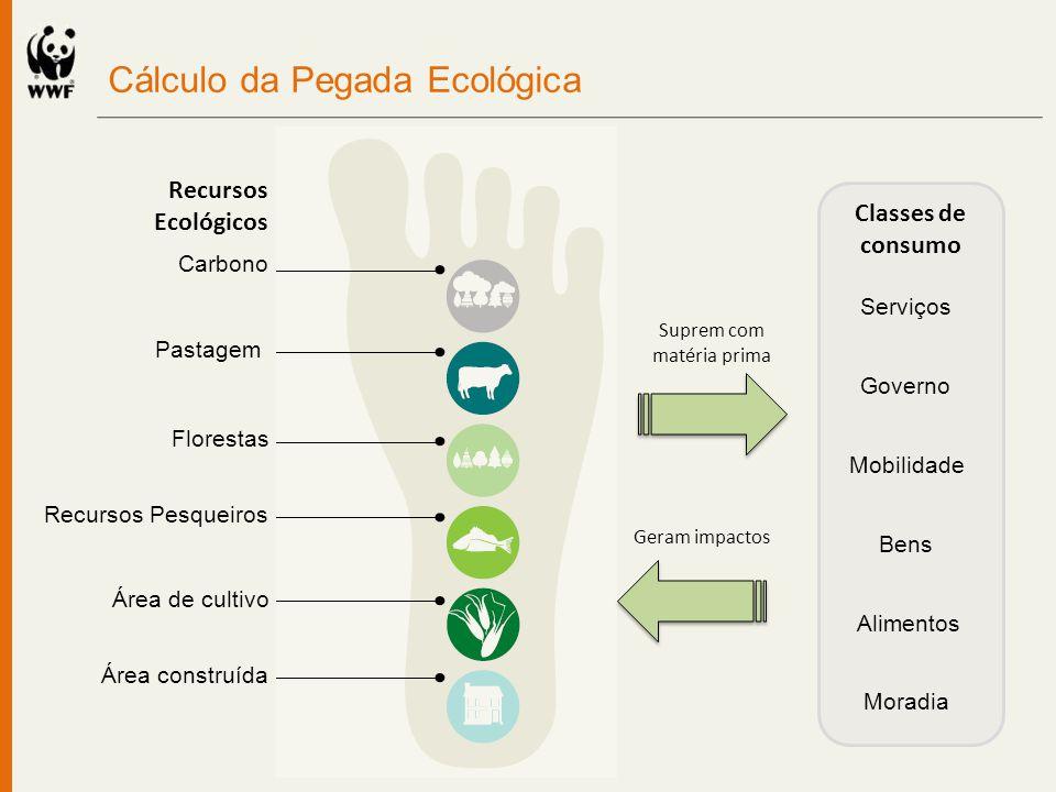 Carbono Pastagem Florestas Recursos Pesqueiros Área de cultivo Área construída Classes de consumo Alimentos Moradia Mobilidade Bens Serviços Governo C