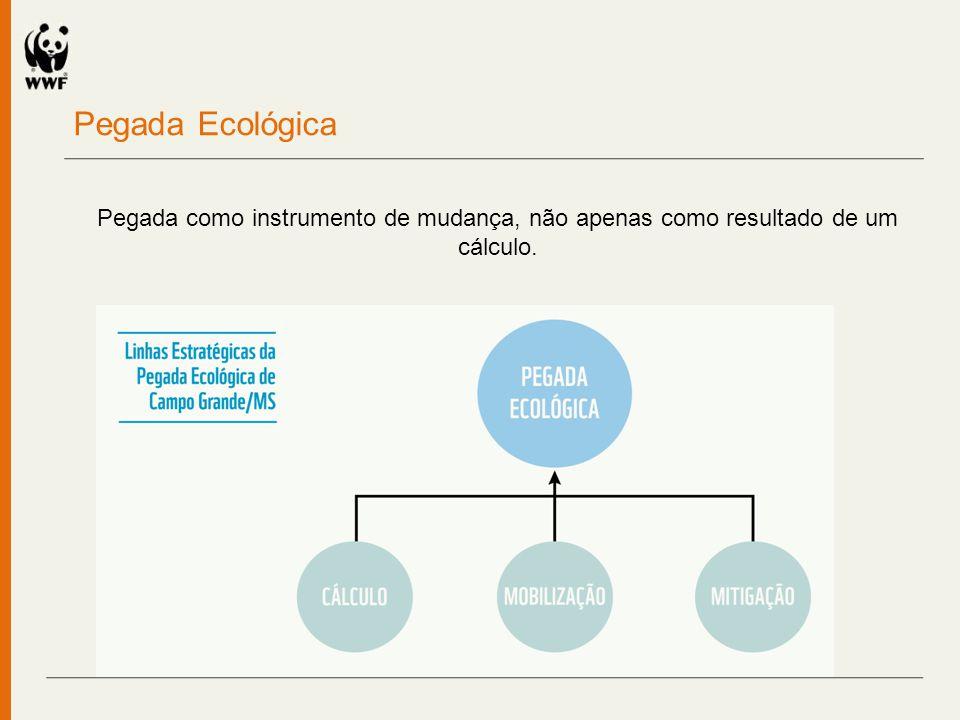 Cálculo da Pegada Ecológica de Campo Grande 3,14 2,82 2,91