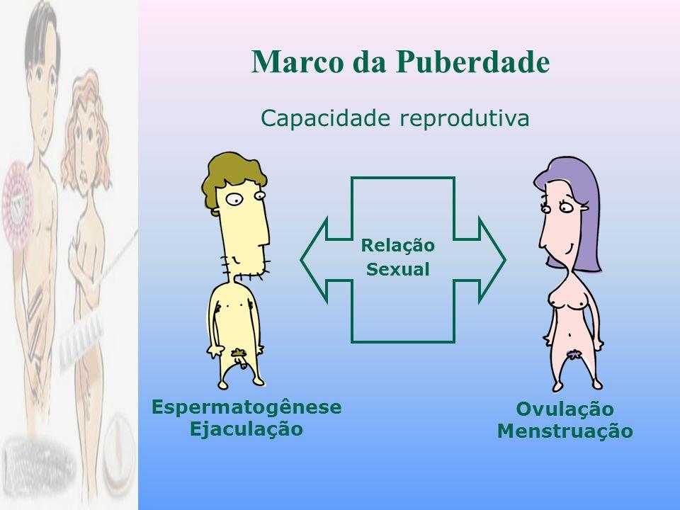 Ovulação Menstruação Espermatogênese Ejaculação Relação Sexual Capacidade reprodutiva Marco da Puberdade