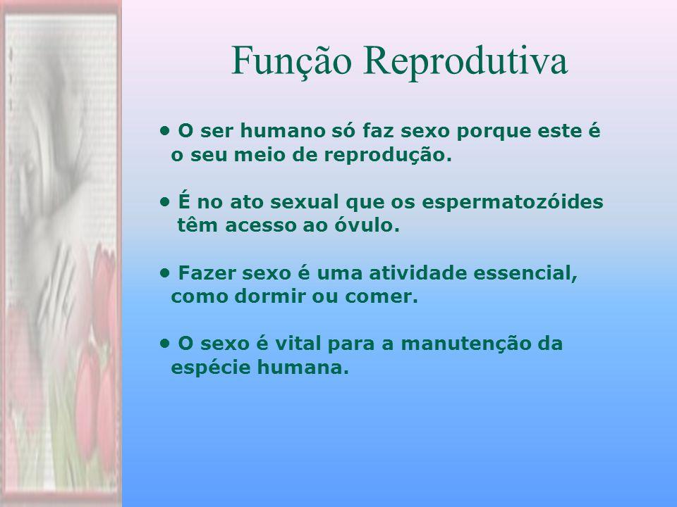 Função Reprodutiva O ser humano só faz sexo porque este é o seu meio de reprodução.