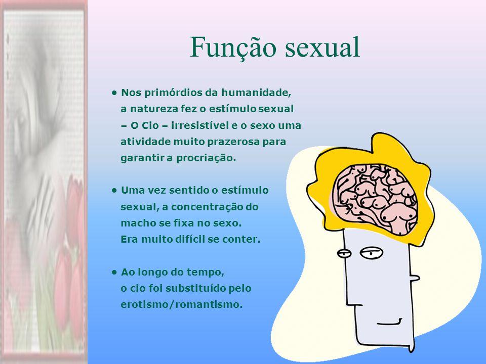 Função sexual Nos primórdios da humanidade, a natureza fez o estímulo sexual – O Cio – irresistível e o sexo uma atividade muito prazerosa para garantir a procriação.