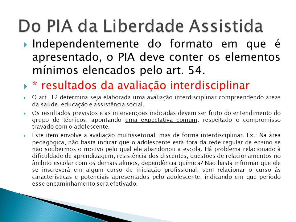 Independentemente do formato em que é apresentado, o PIA deve conter os elementos mínimos elencados pelo art.