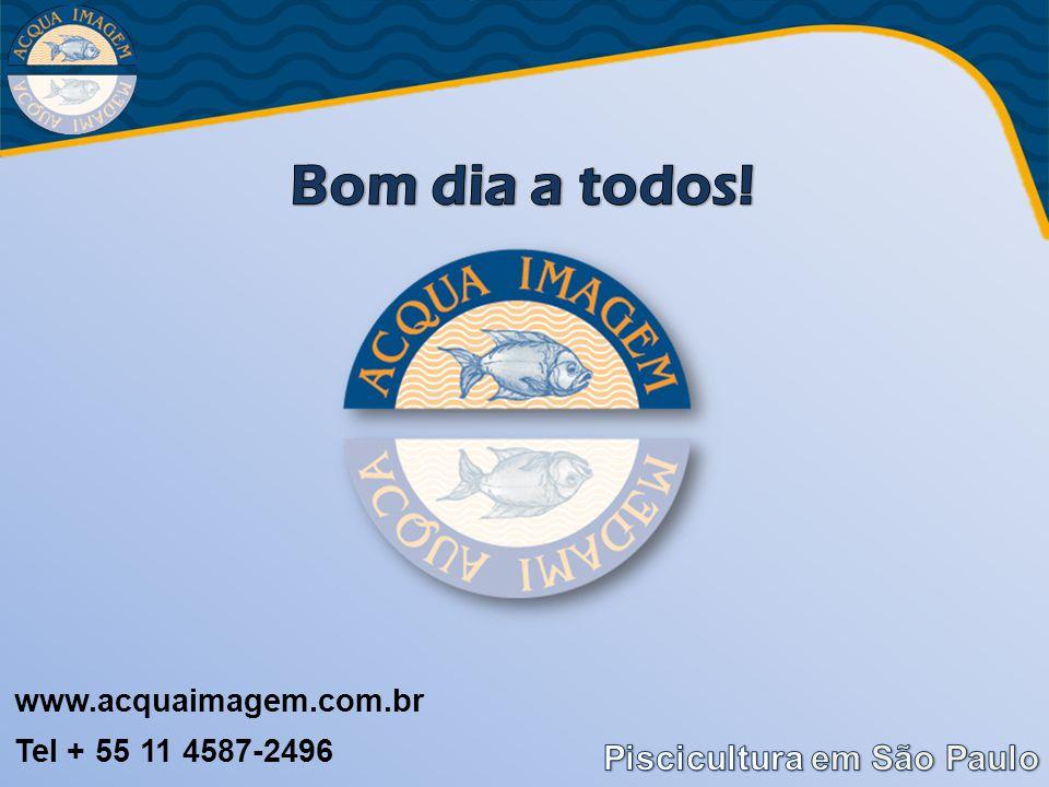 www.acquaimagem.com.br Tel + 55 11 4587-2496