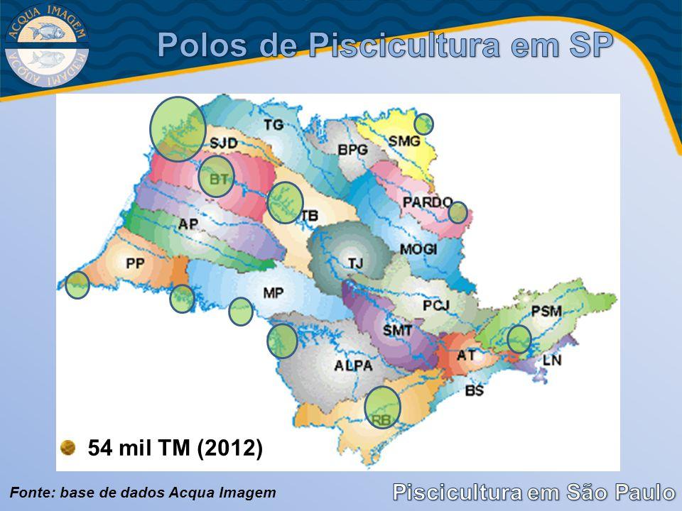 Fonte: base de dados Acqua Imagem 54 mil TM (2012)