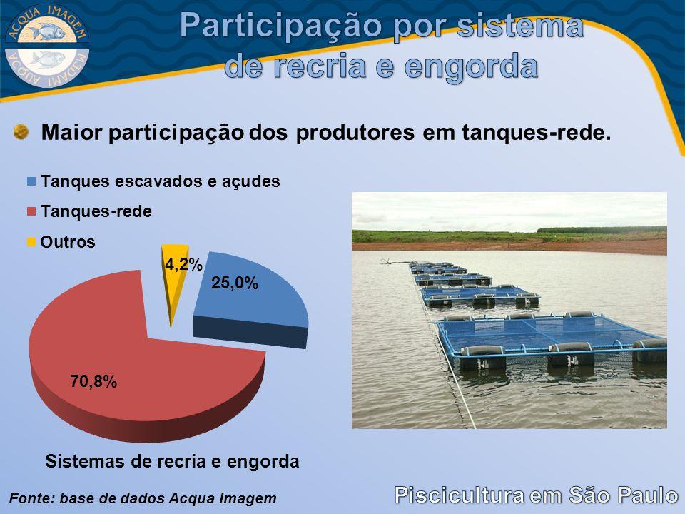 Maior participação dos produtores em tanques-rede. Fonte: base de dados Acqua Imagem
