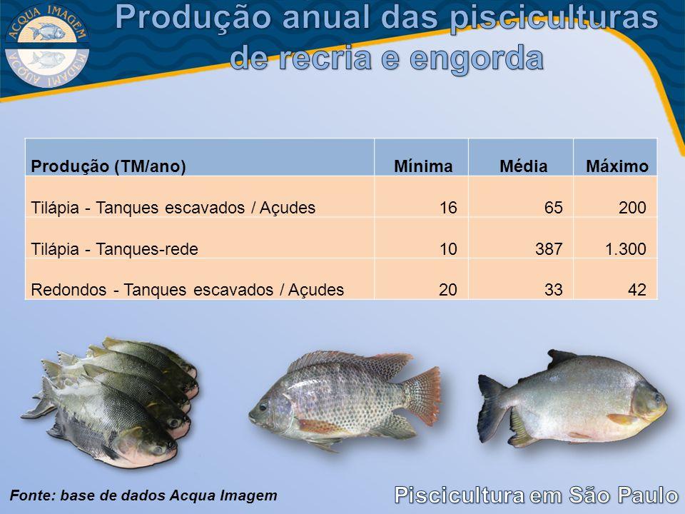 Produção (TM/ano)MínimaMédiaMáximo Tilápia - Tanques escavados / Açudes 16 65 200 Tilápia - Tanques-rede 10 387 1.300 Redondos - Tanques escavados / A