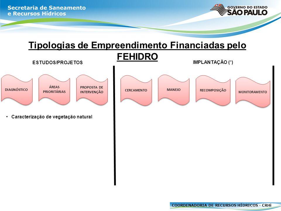 COORDENADORIA DE RECURSOS HÍDRICOS - CRHi DIAGNÓSTICO Tipologias de Empreendimento Financiadas pelo FEHIDRO ÁREAS PRIORITÁRIAS PROPOSTA DE INTERVENÇÃO