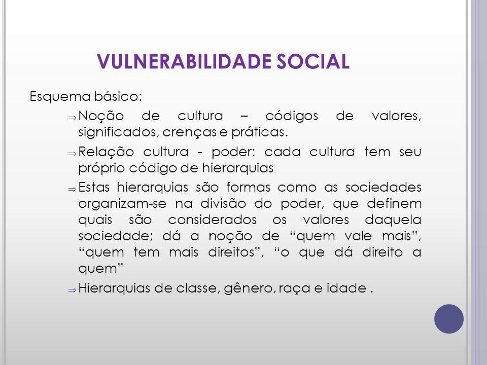 VULNERABILIDADE SOCIAL Esquema básico: Noção de cultura – códigos de valores, significados, crenças e práticas. Relação cultura - poder: cada cultura