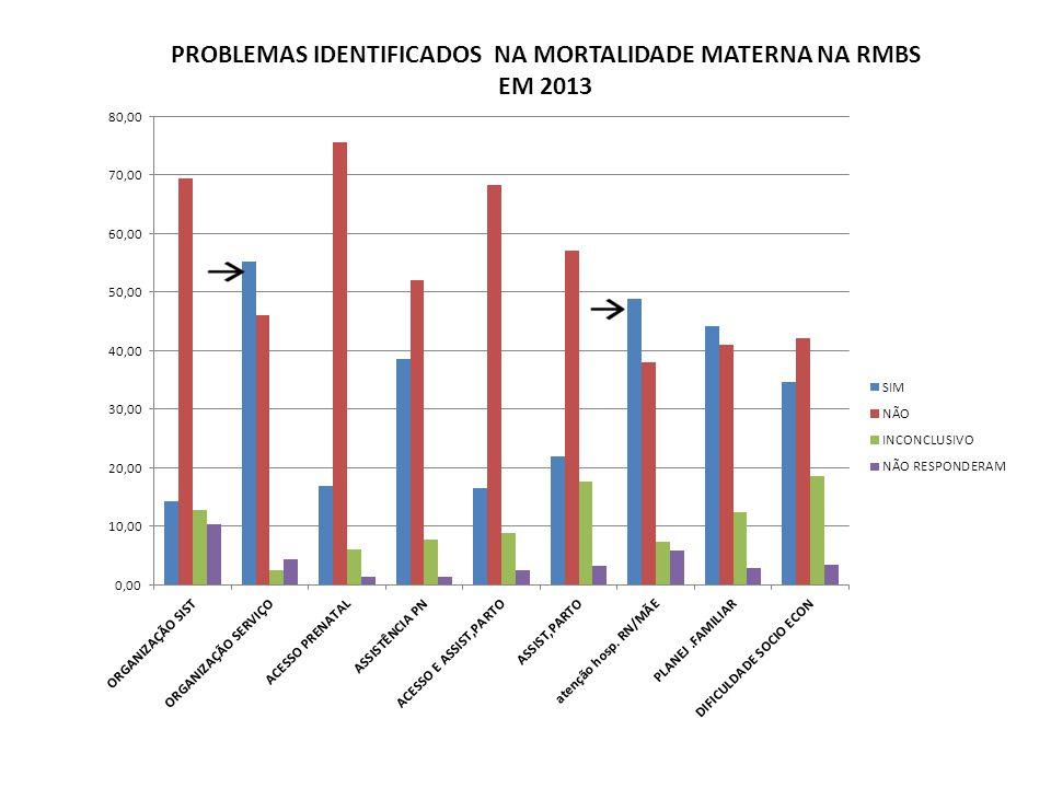 PROBLEMAS IDENTIFICADOS NA MORTALIDADE MATERNA NA RMBS EM 2013