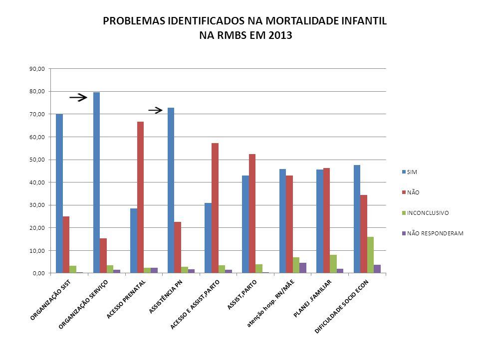 PROBLEMAS IDENTIFICADOS NA MORTALIDADE INFANTIL NA RMBS EM 2013