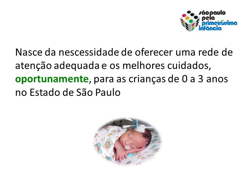 Nasce da nescessidade de oferecer uma rede de atenção adequada e os melhores cuidados, oportunamente, para as crianças de 0 a 3 anos no Estado de São Paulo