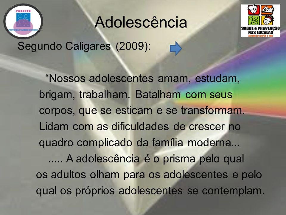 Adolescência Segundo Caligares (2009): Nossos adolescentes amam, estudam, brigam, trabalham.