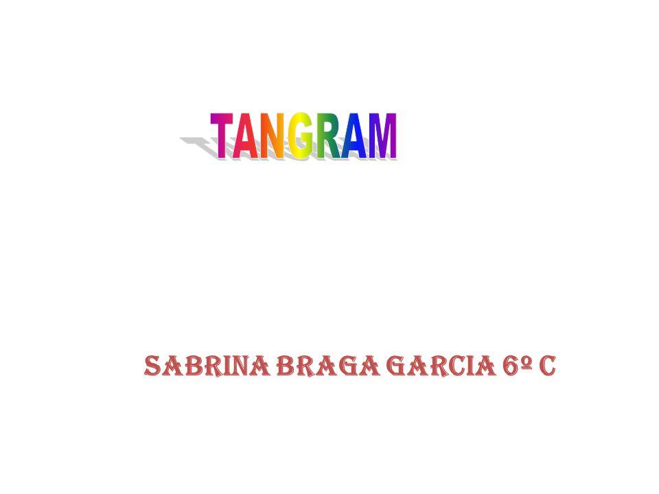 Sabrina Braga Garcia 6º C