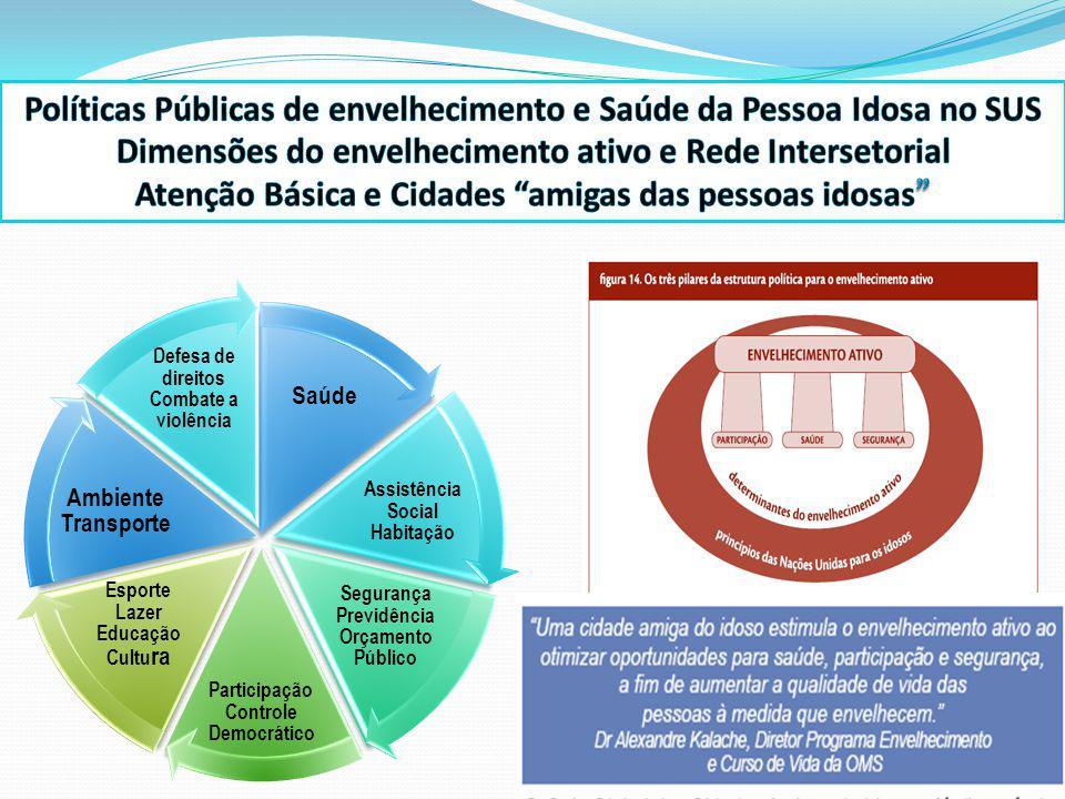 Saúde Assistência Social Habitação Segurança Previdência Orçamento Público Participação Controle Democrático Esporte Lazer Educação Cultu ra Ambiente