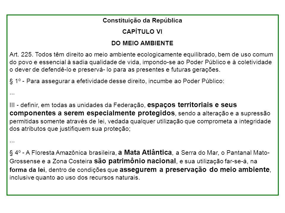 Constituição da República CAPÍTULO VI DO MEIO AMBIENTE Art. 225. Todos têm direito ao meio ambiente ecologicamente equilibrado, bem de uso comum do po