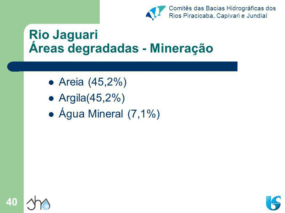 Comitês das Bacias Hidrográficas dos Rios Piracicaba, Capivari e Jundiaí 40 Rio Jaguari Áreas degradadas - Mineração Areia (45,2%) Argila(45,2%) Água