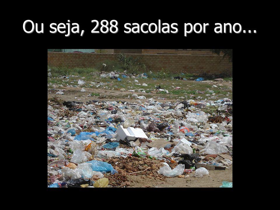 Ou seja, 288 sacolas por ano...