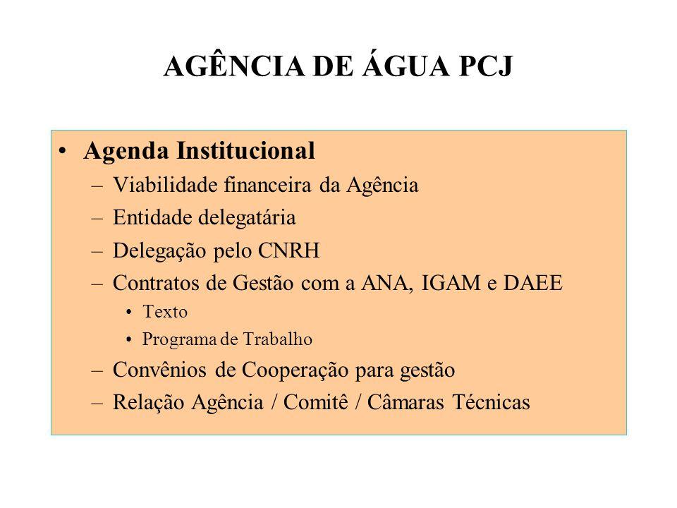 AGÊNCIA DE ÁGUA PCJ Agenda Institucional –Viabilidade financeira da Agência –Entidade delegatária –Delegação pelo CNRH –Contratos de Gestão com a ANA, IGAM e DAEE Texto Programa de Trabalho –Convênios de Cooperação para gestão –Relação Agência / Comitê / Câmaras Técnicas