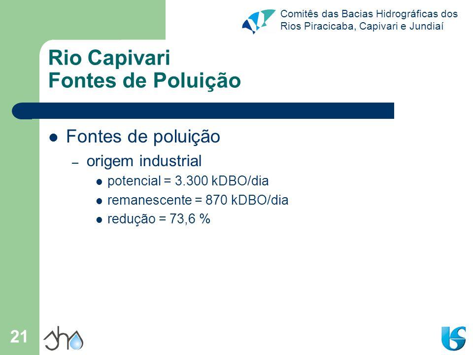 Comitês das Bacias Hidrográficas dos Rios Piracicaba, Capivari e Jundiaí 21 Rio Capivari Fontes de Poluição Fontes de poluição – origem industrial pot
