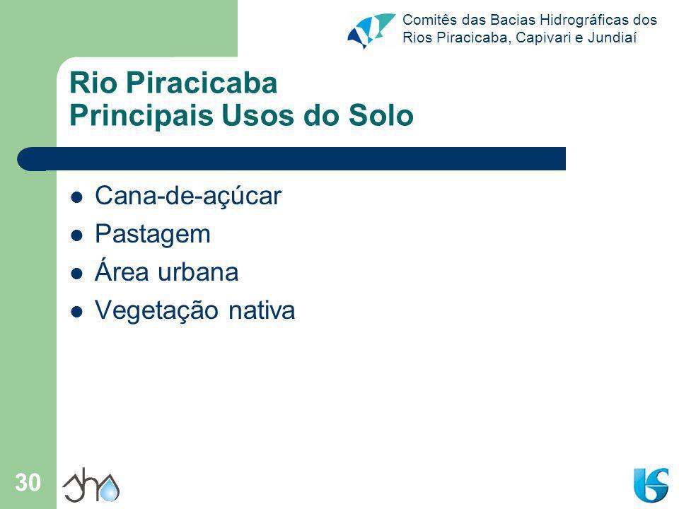 Comitês das Bacias Hidrográficas dos Rios Piracicaba, Capivari e Jundiaí 30 Rio Piracicaba Principais Usos do Solo Cana-de-açúcar Pastagem Área urbana Vegetação nativa