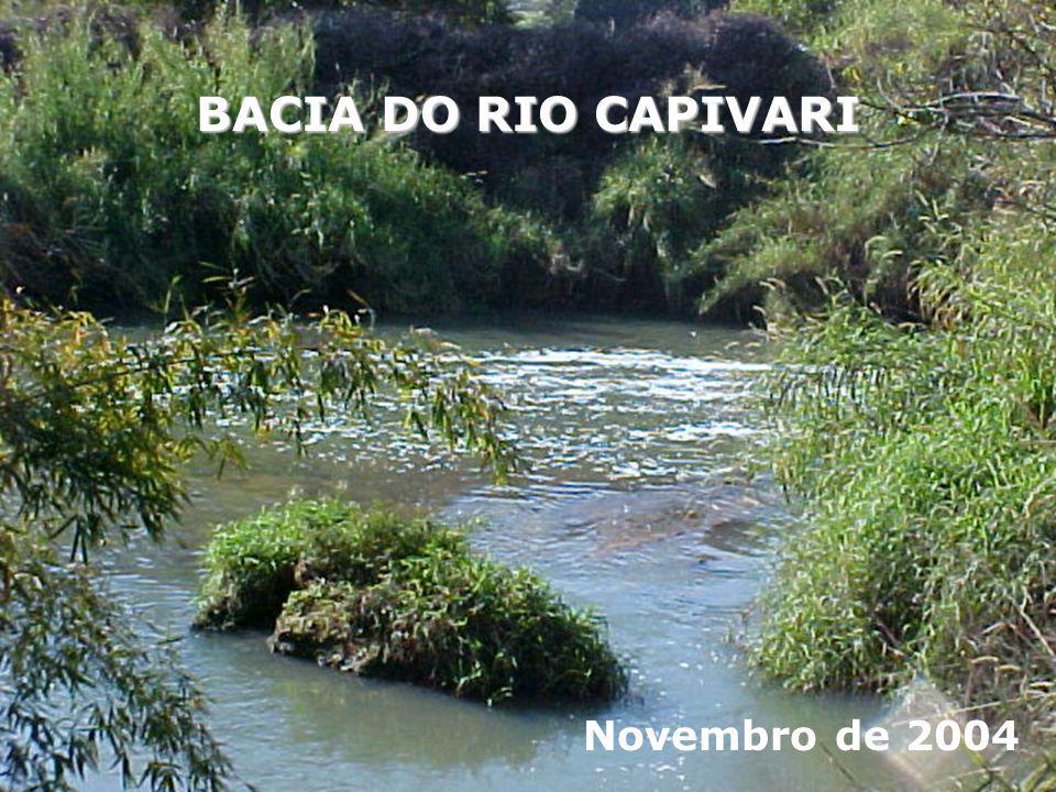 BACIA DO RIO CAPIVARI Novembro de 2004