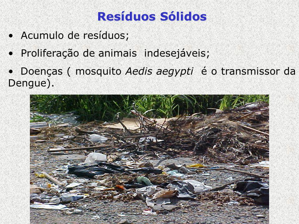 Resíduos Sólidos Acumulo de resíduos; Proliferação de animais indesejáveis; Doenças ( mosquito Aedis aegypti é o transmissor da Dengue).