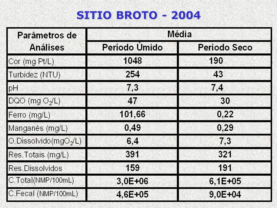 SITIO BROTO - 2004
