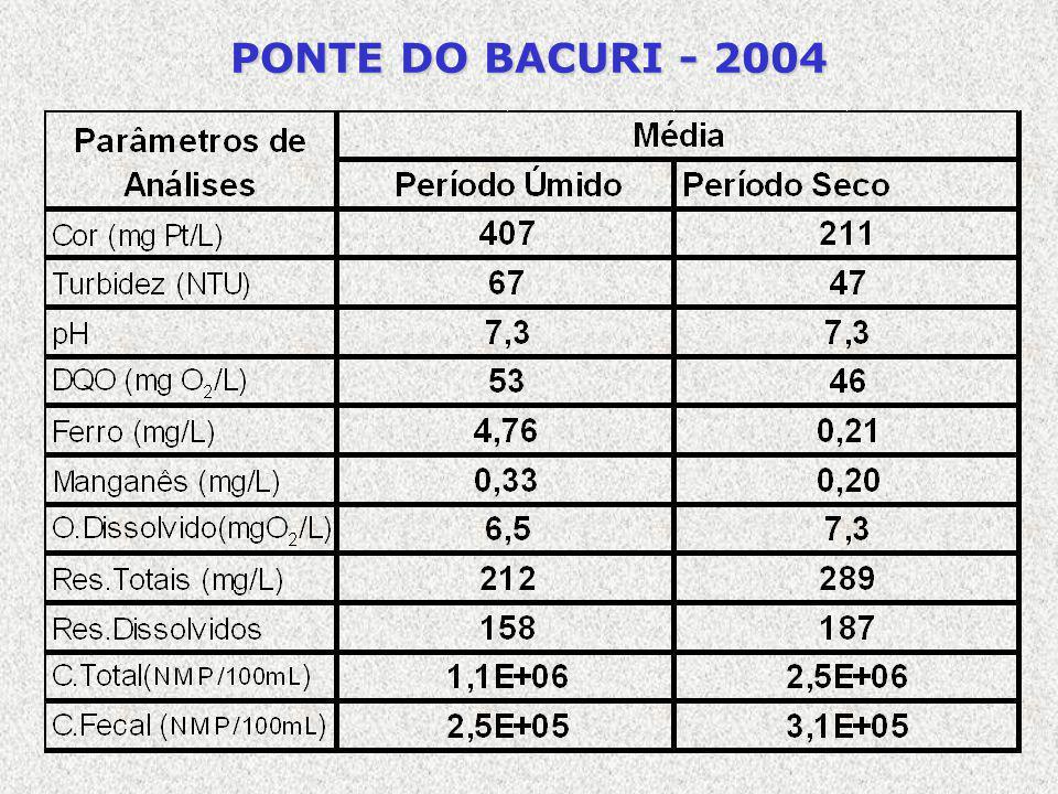 PONTE DO BACURI - 2004
