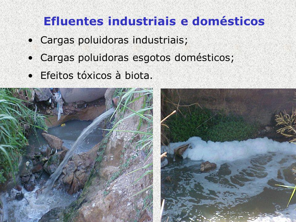 Efluentes industriais e domésticos Cargas poluidoras industriais; Cargas poluidoras esgotos domésticos; Efeitos tóxicos à biota.