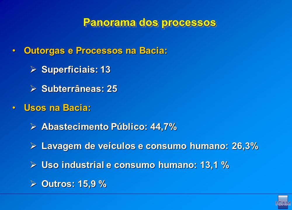 Outorgas e Processos na Bacia:Outorgas e Processos na Bacia: Superficiais: 13 Superficiais: 13 Subterrâneas: 25 Subterrâneas: 25 Usos na Bacia:Usos na