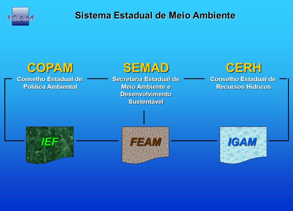 Sistema Estadual de Meio Ambiente SEMAD Secretaria Estadual de Meio Ambiente e DesenvolvimentoSustentávelCERH Conselho Estadual de Recursos Hídricos C