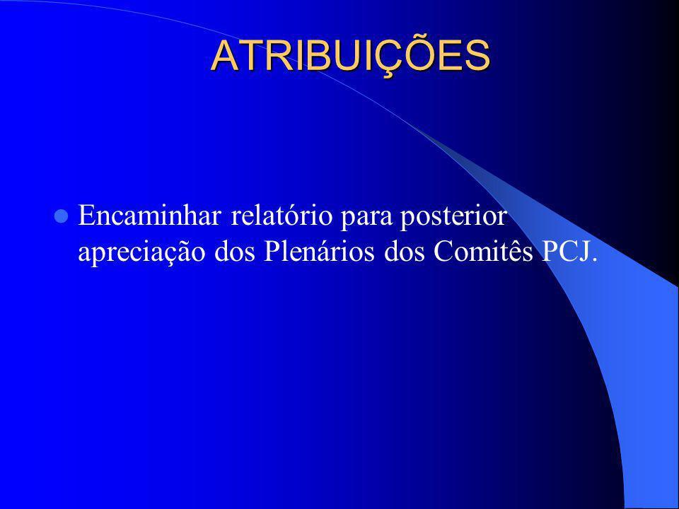 Sistematizar os debates e estudos sobre a renovação da outorga do sistema Cantareira; Solicitar e coletar informações ATRIBUIÇÕES