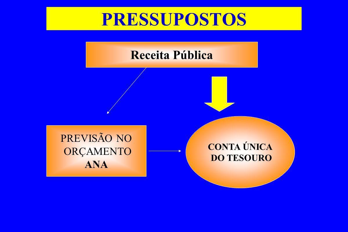 ANA CNRH COMITÊ AGÊNCIA DA BACIA Entidade delegatória CONTA ÚNICA DO TESOURO FLUXO DE OPERACIONALIZAÇÃO DA COBRANÇA Mecanismos de cobrança Define Prioridade de Aplicação CONTRATO DE GESTÃO IMPLEMENTAÇÃO DAS AÇÕES NA BACIA Pagamento Transferência financeira USUÁRIO Empenho de Recursos Comissão de avaliação Prestação de Contas Liquidação Orçamento ANA Efetua a cobrança VINCULADA