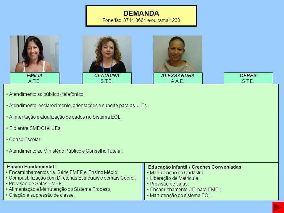 DEMANDA Fone/fax: 3744-3664 e/ou ramal: 230 Ensino Fundamental I Encaminhamentos 1a. Série EMEF e Ensino Médio; Compatibilização com Diretorias Estadu