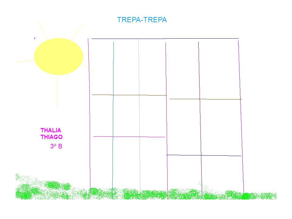 TREPA-TREPA