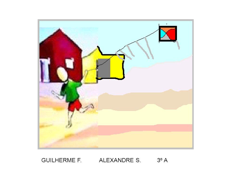 GUILHERME F. ALEXANDRE S. 3º A