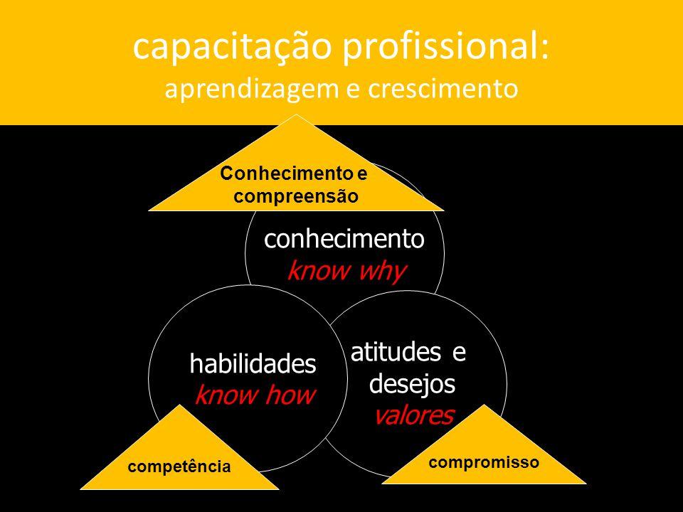 capacitação profissional: aprendizagem e crescimento conhecimento know why atitudes e desejos valores habilidades know how Conhecimento e compreensão competência compromisso