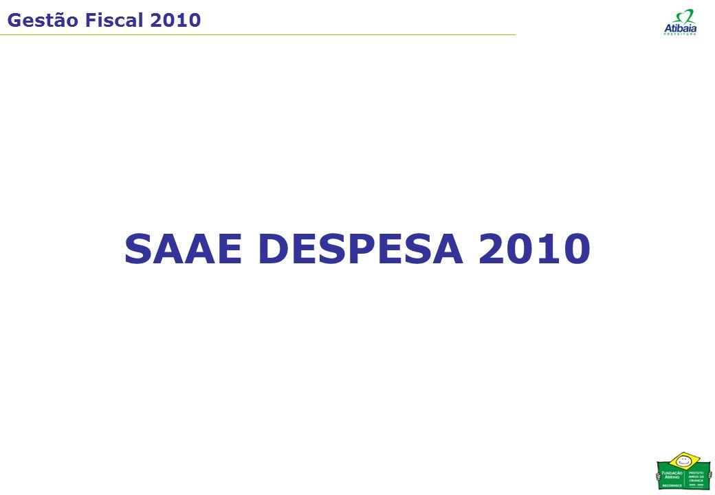 Gestão Fiscal 2010 SAAE DESPESA 2010