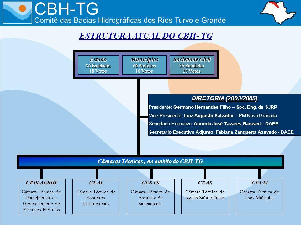 ESTRUTURA ATUAL DO CBH- TG DIRETORIA (2003/2005) Presidente: Germano Hernandes Filho – Soc. Eng. de SJRP Vice-Presidente: Luiz Augusto Salvador – PM N