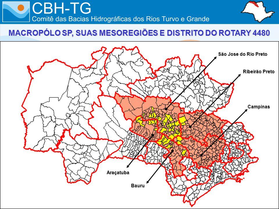 São Jose do Rio Preto Ribeirão Preto Campinas Bauru Araçatuba MACROPÓLO SP, SUAS MESOREGIÕES E DISTRITO DO ROTARY 4480