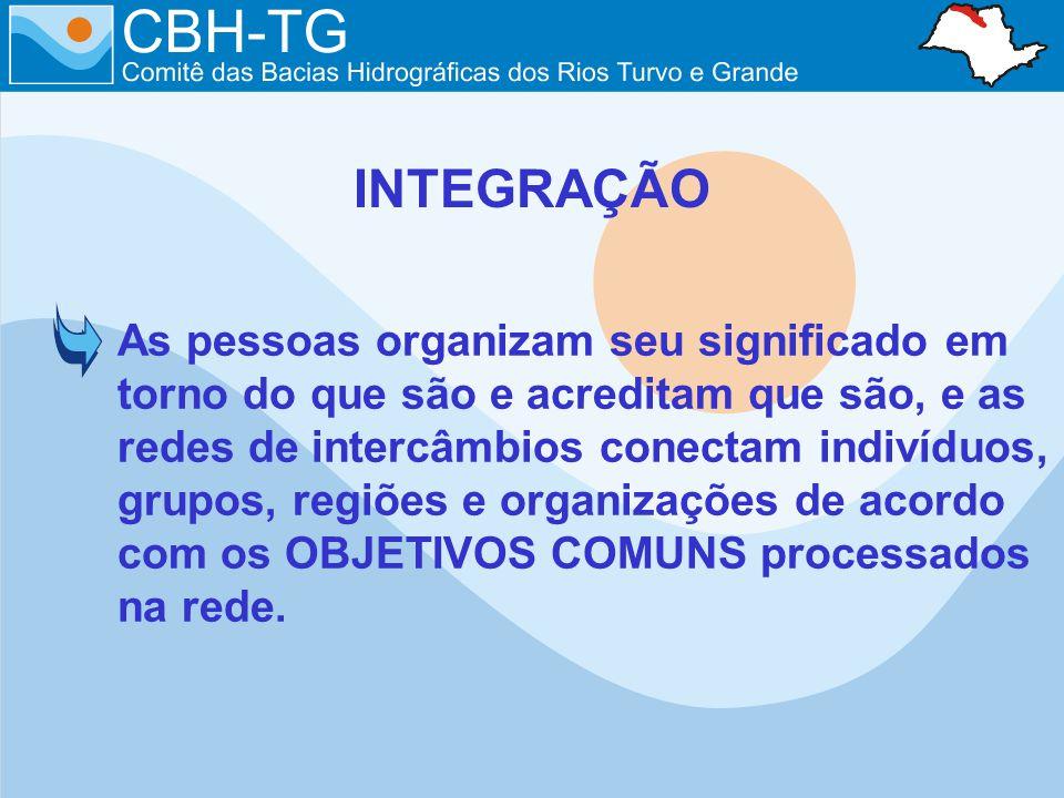 As pessoas organizam seu significado em torno do que são e acreditam que são, e as redes de intercâmbios conectam indivíduos, grupos, regiões e organizações de acordo com os OBJETIVOS COMUNS processados na rede.