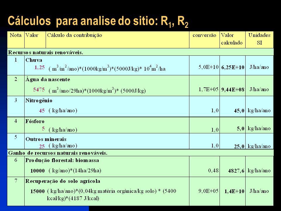 Cálculos para analise do sitio: R 1, R 2