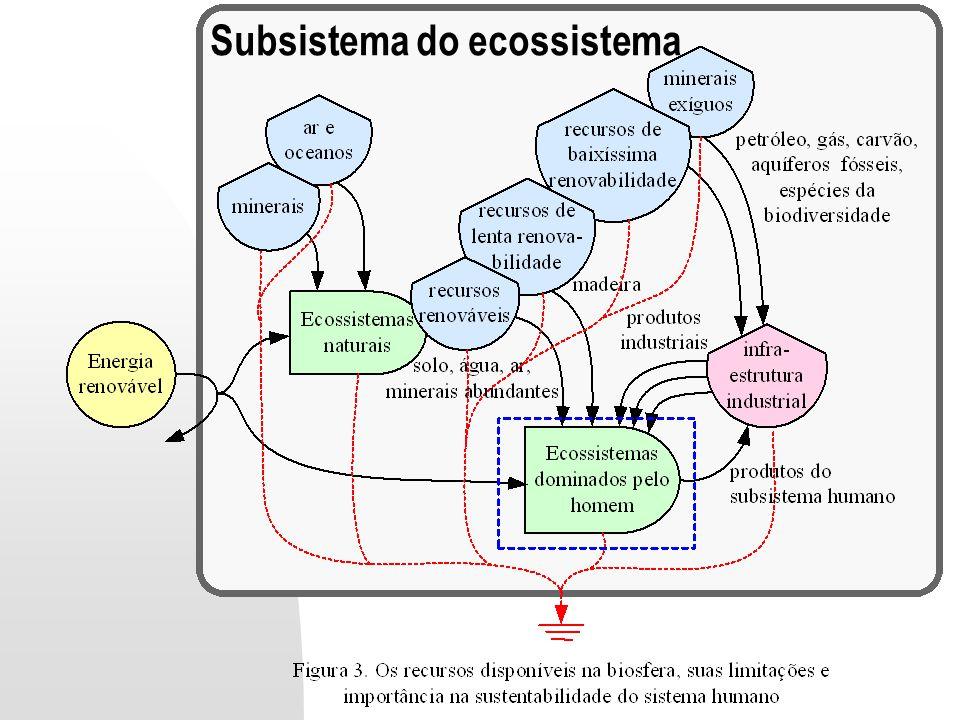 Subsistema do ecossistema
