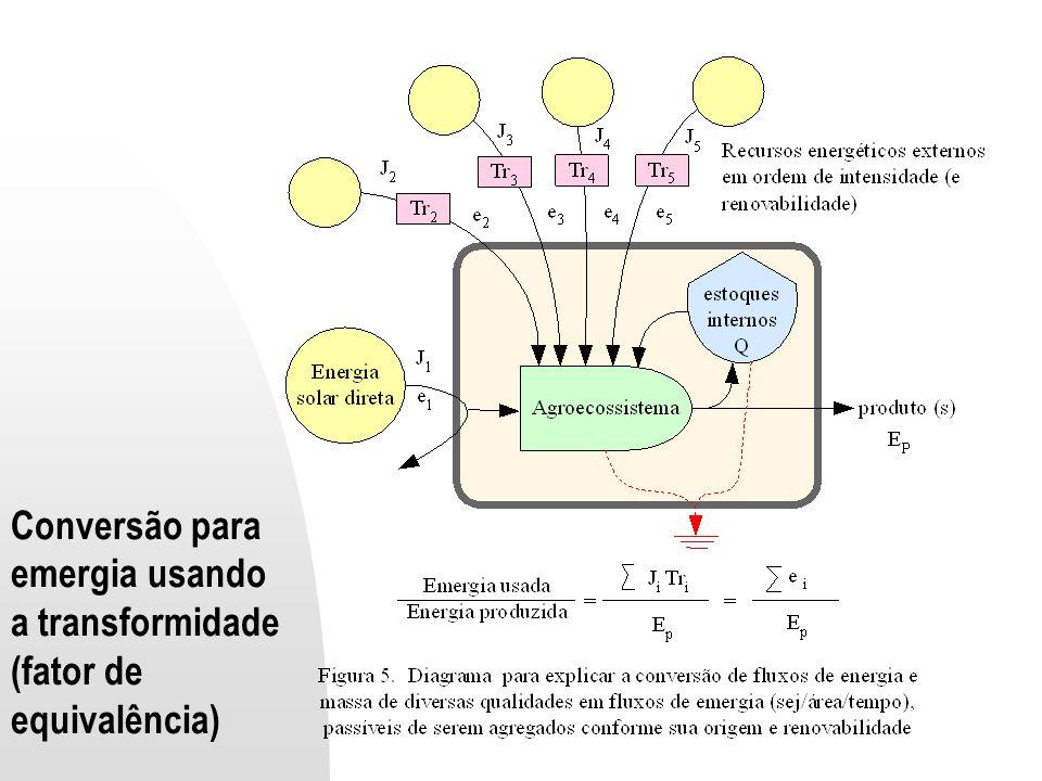 Conversão para emergia usando a transformidade (fator de equivalência)