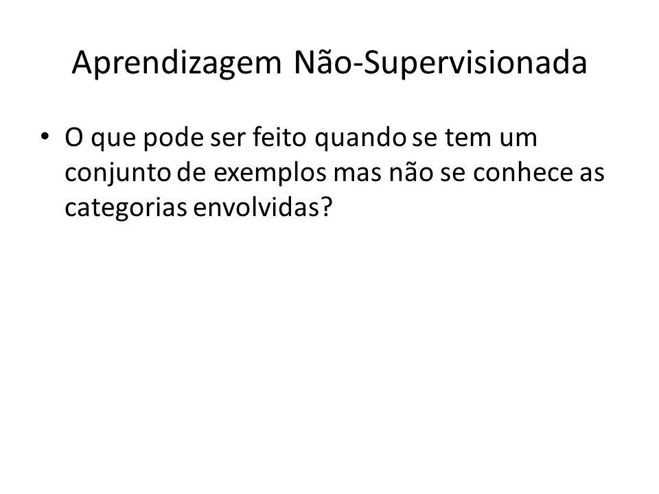 Aprendizagem Não-Supervisionada O que pode ser feito quando se tem um conjunto de exemplos mas não se conhece as categorias envolvidas?