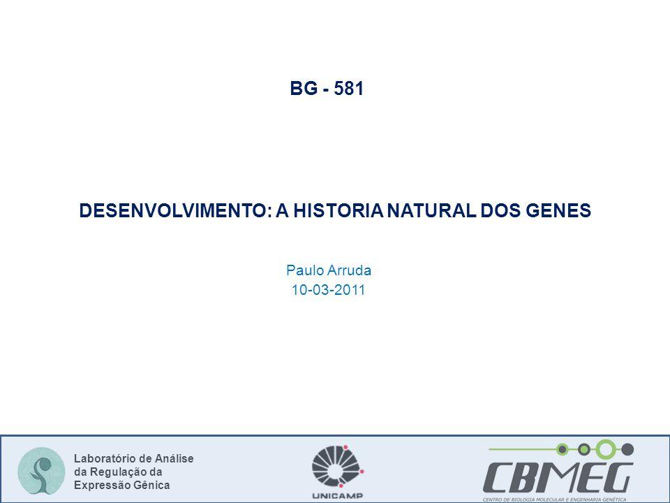 Laboratório de Análise da Regulação da Expressão Gênica DESENVOLVIMENTO: A HISTORIA NATURAL DOS GENES Paulo Arruda 10-03-2011 BG - 581