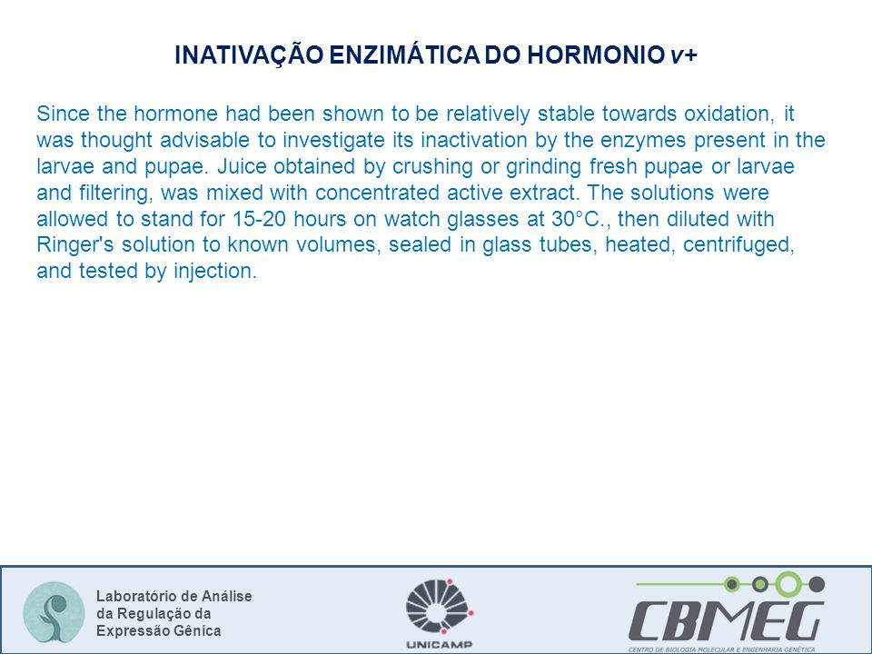 Laboratório de Análise da Regulação da Expressão Gênica INATIVAÇÃO ENZIMÁTICA DO HORMONIO v+ Since the hormone had been shown to be relatively stable towards oxidation, it was thought advisable to investigate its inactivation by the enzymes present in the larvae and pupae.
